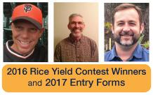 2015-rice-yield-contest-winners